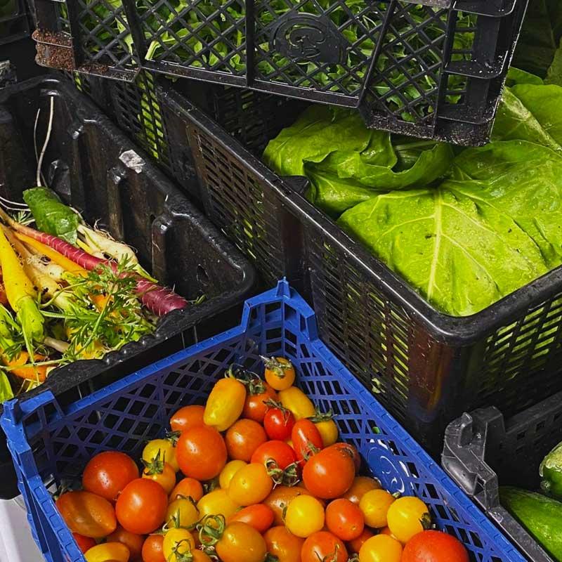 Coll Hotel fresh produce